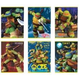 Pool Over 16 - CARTOONS TURTLES - MAXI 18+1 G100 RIG. A