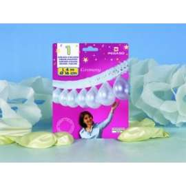 *OFFERTA PARTY FROU-FROU + PALLONCINI