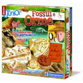 *OFFERTA FOCUS JUNIOR FOSSILI E ORME